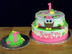 Owl Theme 1st Birthday for girl — Children's Birthday Cakes