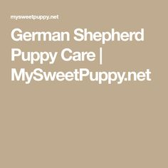 German Shepherd Puppy Care | MySweetPuppy.net