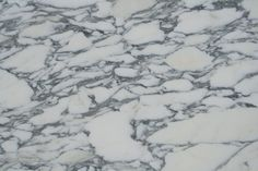 Beautifully dramatic Italian white marble. Bright white material with heavy grey veining: Arabescato Corchia