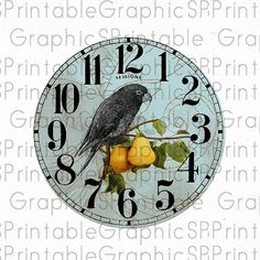 Beautiful colours combination - Printable Vintage Parrot and Pears Clock Face Digital Image Instant Download via Etsy