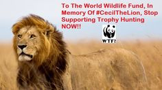 PLEASE STOP TROPHY HUNTING. PLEASE SIGN!