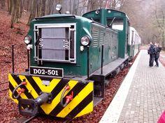 Small train - Lillafured, Hungary Hungary, Europe, Train, Island, Spaces, Block Island, Islands, Trains