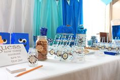 cookie monster party - look at the backdrop! Could use white sheet/drape with tulle in front of it in light and dark blue?