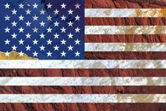 USA's flag - Satellite Photography: Bolivia, Chad, Mediterranean sea, 2016