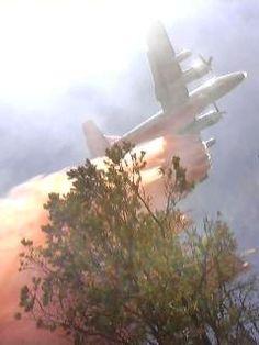 Wildland fire in New Mexico