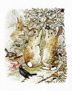 Three Bunnies Gather Blackberries by Beatrix Potter | Art Posters