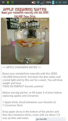 Apple Cinnamon Water - Boost your metabolism naturally with this ZERO calorie Detox Drink.