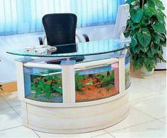 Fish Tank and Desk just because!!!