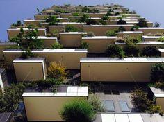 Bosco Verticale    New Architecture    Milano    GaiaFappani