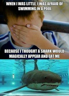 shark in the pool?