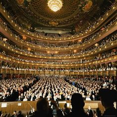 Henry Groskinsky: Audience at gala on the last night in the old Metropolitan Opera House before the company moved to new home at Lincoln Center. New York, April Semperoper Dresden, Theater, Metropolitan Opera, Lincoln Center, Opera Singers, Concert Hall, Classical Music, Classical Opera, New York City