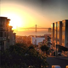 Telegraph Hill Resident Nick DeWilde Tells us About the 'Hood. Curbed