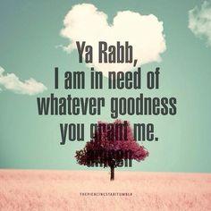 Ya Rabb, Im in need of whatever goodness you grant me!