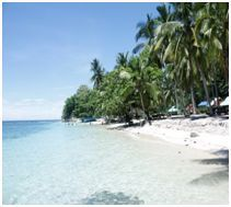 Scuba Diving Day Trips and Multi-Day Diving Trips Cebu, Beautiful Islands, All Pictures, Day Trips, Diving, Philippines, Asia, Beach, Water