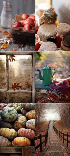 it's the best Season in whole year, Αγαπώ το φθινόπωρο Deco Champetre, Autumn Cozy, Autumn Art, Autumn Aesthetic, Happy Fall Y'all, Autumn Inspiration, Moodboard Inspiration, Fashion Inspiration, Fall Harvest