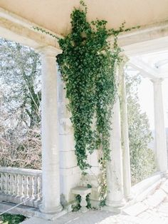 She really is covered in vines. Beautiful Flowers Garden, Beautiful Gardens, Under The Tuscan Sun, Small Greenhouse, Tuscan Wedding, Wedding Photo Booth, Winter Wedding Inspiration, Exterior, Lady Grey