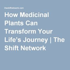 How Medicinal Plants Can Transform Your Life's Journey | The Shift Network