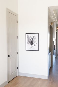 ****Mindful gray very close to hidden cove! sherwin williams Mindful Grey trim and door color Interior Door Colors, Grey Interior Doors, Door Paint Colors, Grey Doors, Interior Trim, Home Interior, Interior Door Styles, Painted Interior Doors, French Interior