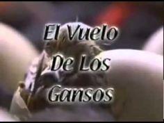 ▶ TRABAJO en equipo [EL VUELO DE LOS GANSOS] (CREA UN NEGOCIO EXITOSO) - YouTube