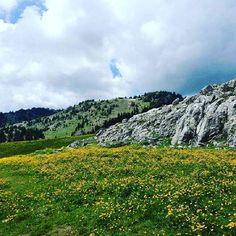 Istog. Kosove  Beni tag dike   #albaniaisbeautiful #albania #kosovo #tirana #amazing #beautiful #view #culture #history #art #destinations #visitalbania #travel #adventure #explore #colors #follow #share #page #likeforlike #followforfollow#istogu