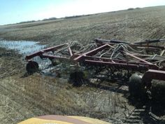 MICHEAL WIPF ‏@Micheal B Wipf The hawk can swim. #plant14 @The Western Producer