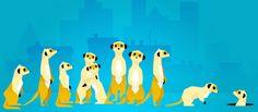 Hurikat ou l'histoire d'un lancement chahuté par Meerkat et #Google. by maddyness.com
