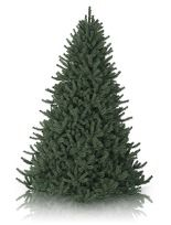 6 - 6.5 Foot Artificial Christmas Trees | Balsam Hill Would LOVE to have a tree like this!