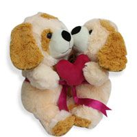 Looking for something unique gifts Valentine hug day? Find the hug day special gifts for your lover at FNP. Our range of hug day gifts including soft toys, chocolate combo, roses bouquet, perfumes and more. http://www.fnp.com/valentine/valentine_hug%20_day.html