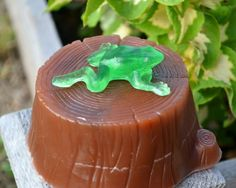 Childrens Soap  Frog on a Log Novelty Kids Soap  by ajsweetsoap, $9.75