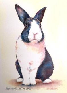 """""""Bailey Bun"""", watercolor bunny rabbit painting by animal artist Teresa Silvestri.  Original sold, but prints & cards available.  Photo reference thanks to East Bay Rabbit Rescue."""