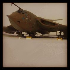 Snowy Victor