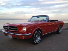 my future car. jk. id have to live in it if i bought it lol.1964 Mustang convertible.