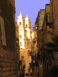 Workaway in . Help with Olive Harvest and enjoy some excursions in Puglia, Italy