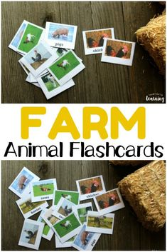 351 Best Farm Theme Activities For Kids Images In 2019