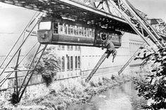 Dieser Marketing-Gag ging gründlich baden: Vor 66 Jahren reiste eine Elefantendame mit der Wuppertaler Schwebebahn. Als Tuffi in Panik geriet, nahm die Fahrt eine dramatische Wendung.