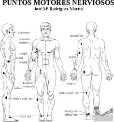 Puntos motores nerviosos Acupuncture Points, Acupressure Points, Tai Chi, Kenpo Karate, Martial Arts Quotes, Martial Arts Techniques, Human Anatomy And Physiology, Martial Arts Training, Hapkido