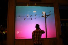 Bird on a Wire, An Interactive Window Display of a Digital Flock of Birds - Bird habitat transect? Not sure how to work this in. Interactive Display, Interactive Installation, Installation Art, Interactive Exhibition, Visual Display, Scared Of Flying, Fear Of Flying, Flock Of Birds, New York
