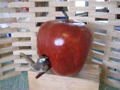 Radical Bird Houses | DIY Gourd Birdhouse Plans wooden table building plans Plans