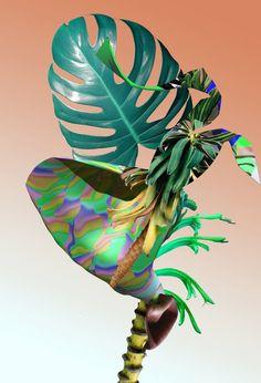Las plantas virtuales de Alain Vonck5