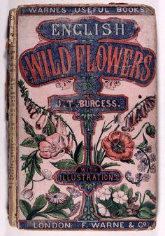 English Wildflowers by J.T. Burgess...