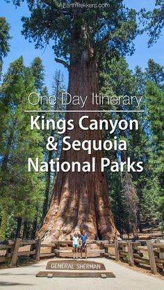 Kings Canyon and Sequoia National Parks one day itinerary. Must-see sites include General Sherman Tree, General Grant Tree, and Moro Rock.