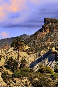 Panoramio - Photo of desieto almeriense Madrid, Malaga, Places To Travel, Places To See, Riding Holiday, Barcelona, Holiday Places, Murcia, Spain Travel