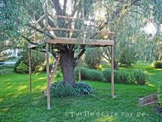 simple tree fort plan - platform and supports, ladder. Love how the weeping willow tree provides natural privacy. Backyard Fort, Backyard Games, Backyard Treehouse, Treehouse Ideas, Playhouse Ideas, Backyard Parties, Backyard Ideas, Outdoor Art, Outdoor Gardens