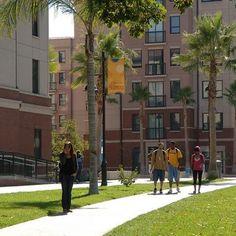 34 Sjsu Campus Ideas Campus San Jose State University San Jose State