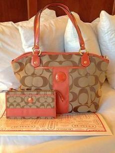Coach Madison Python Print Maggie Hobo Handbag  Holiday Adds