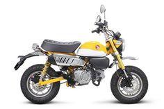 Takegawa stock style performance exhaust Honda Monkey 125 / NEW JPN Honda Cbr 600, Honda Xl 125, Honda Forza 125, Honda Monkey, Touch Up Paint, Performance Exhaust, Honda Motorcycles, Mini Bike, My Ride