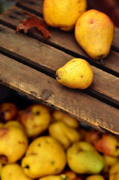 Let's pin autumn fruits & nuts etc. Lots of apples, berries, acorns etc - the odd pumpkin but let's not go too pumpkin mad yet, as that's a board all of its own. Autumnal colours please, no pinks/blues today. Mabon, Yellow And Brown, Mellow Yellow, Golden Yellow, Autumn Day, Autumn Leaves, Hello Autumn, Winter, Jaune Orange