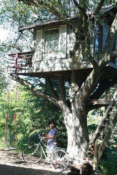 swing & deck