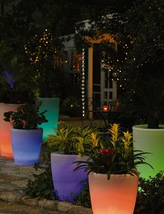 do plastic,glass,plexiglass,clear planters and then frost them and use colored LEDs and solar panels to light htem up at night, do the smae with the colored balls or white ones Tall Planters, Garden Planters, White Planters, Plastic Planters, Resin Planters, Balcony Gardening, Plastic Glass, Outdoor Garden Decor, Outdoor Gardens
