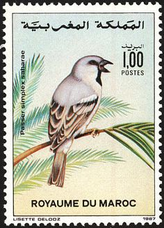 Desert Sparrow stamps - mainly images - gallery format